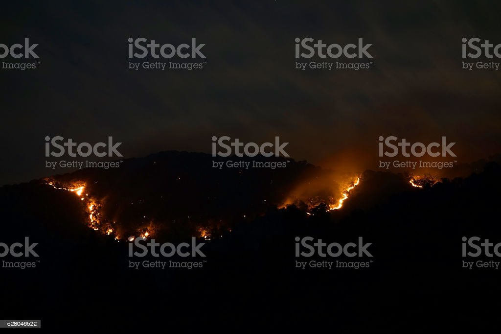 Huge bush fire stock photo
