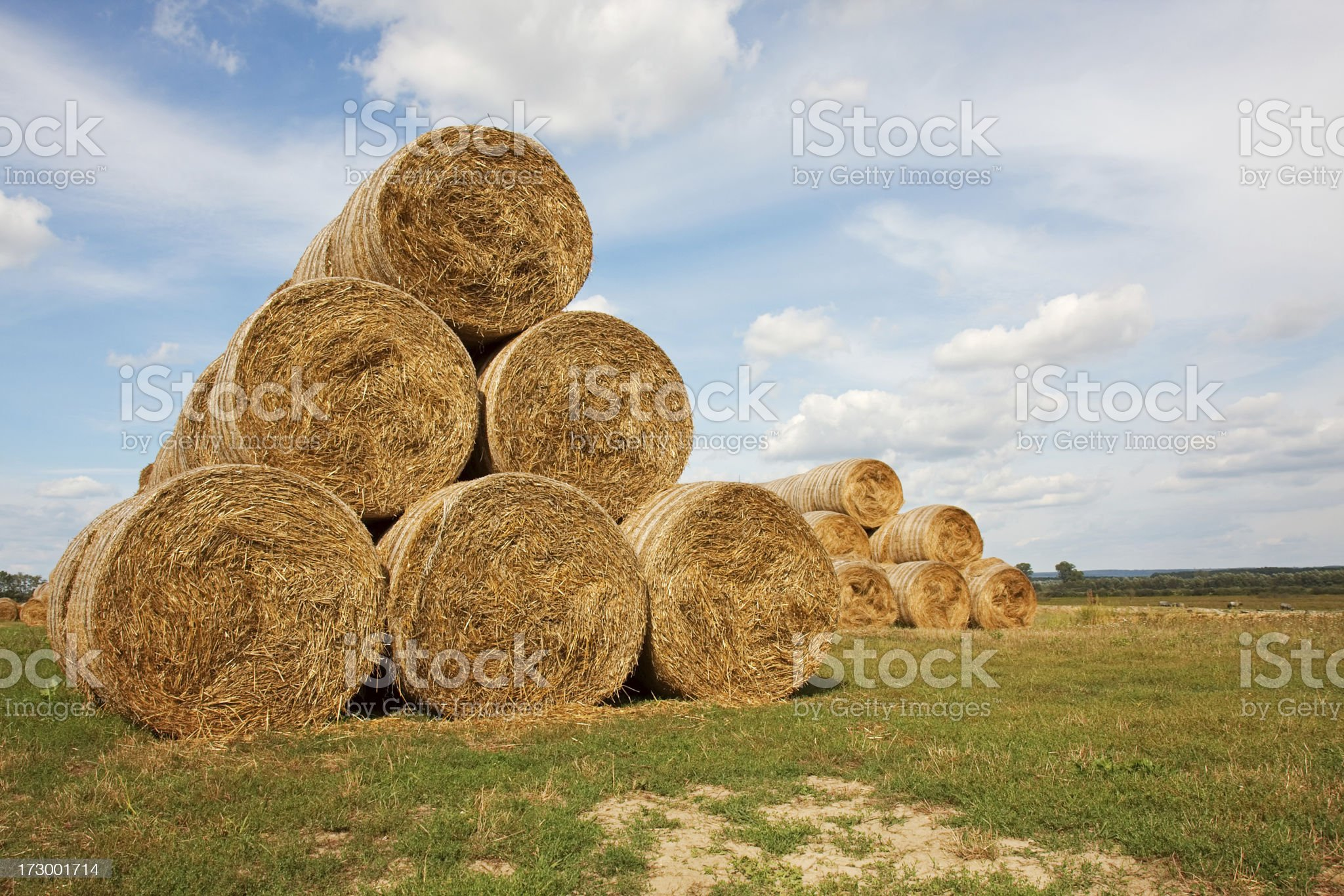 Huge piles of hay royalty-free stock photo