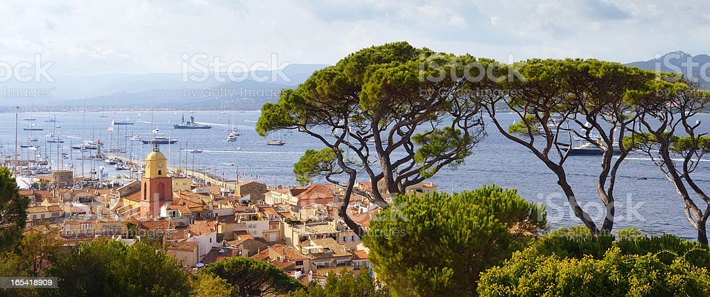 Huge Pine Trees above St. Tropez at the Cote D'Azur stock photo