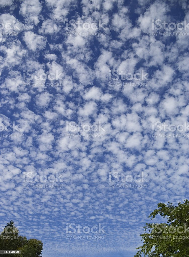 Huge sky with puffy clouds. stock photo