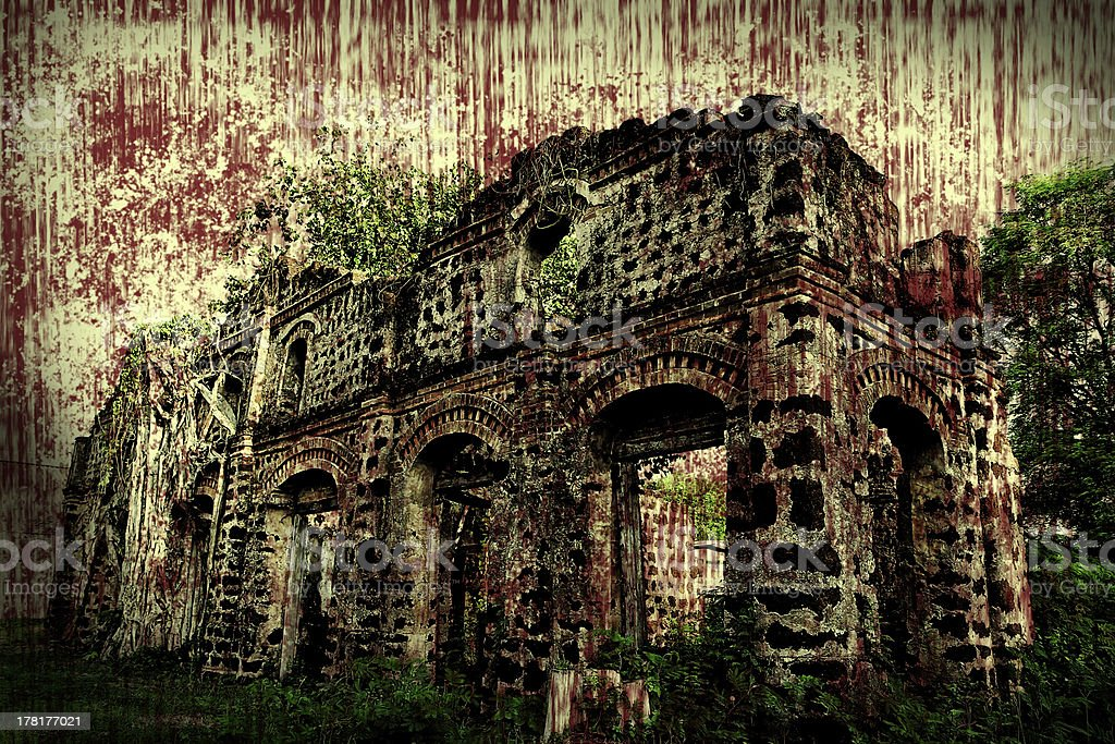 huge tree root in destroyed old structure royalty-free stock photo