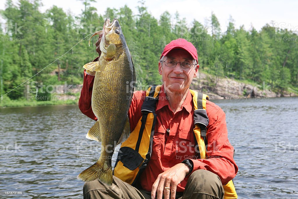 Huge Walleye royalty-free stock photo