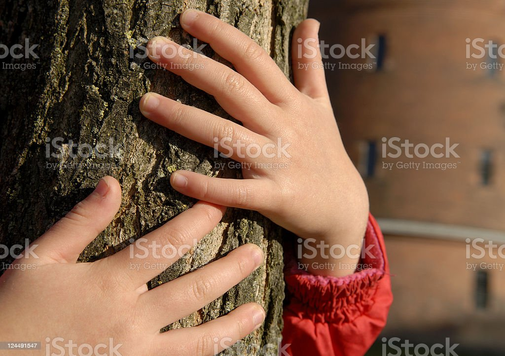 Hugging a tree royalty-free stock photo