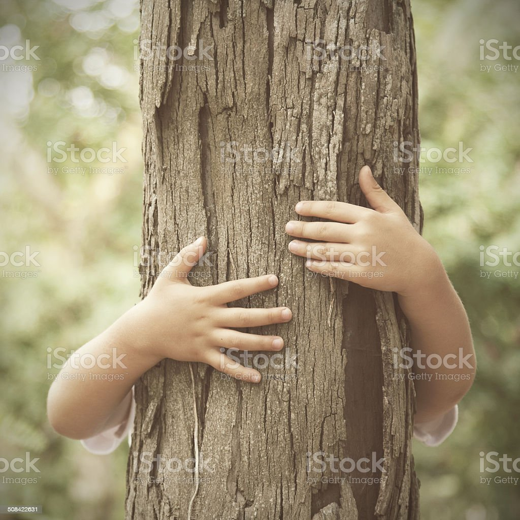 Huging a tree stock photo