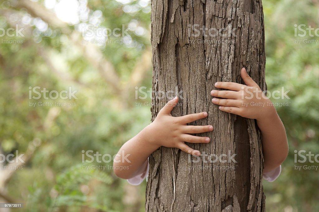 Huging a tree stock photo