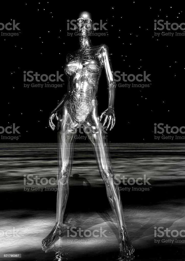 Anatomía Humana Stock Foto e Imagen de Stock 521790367   iStock