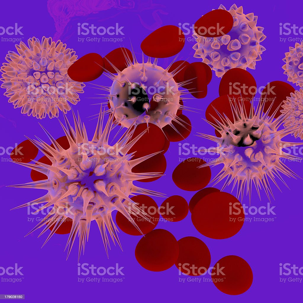 human blood stock photo