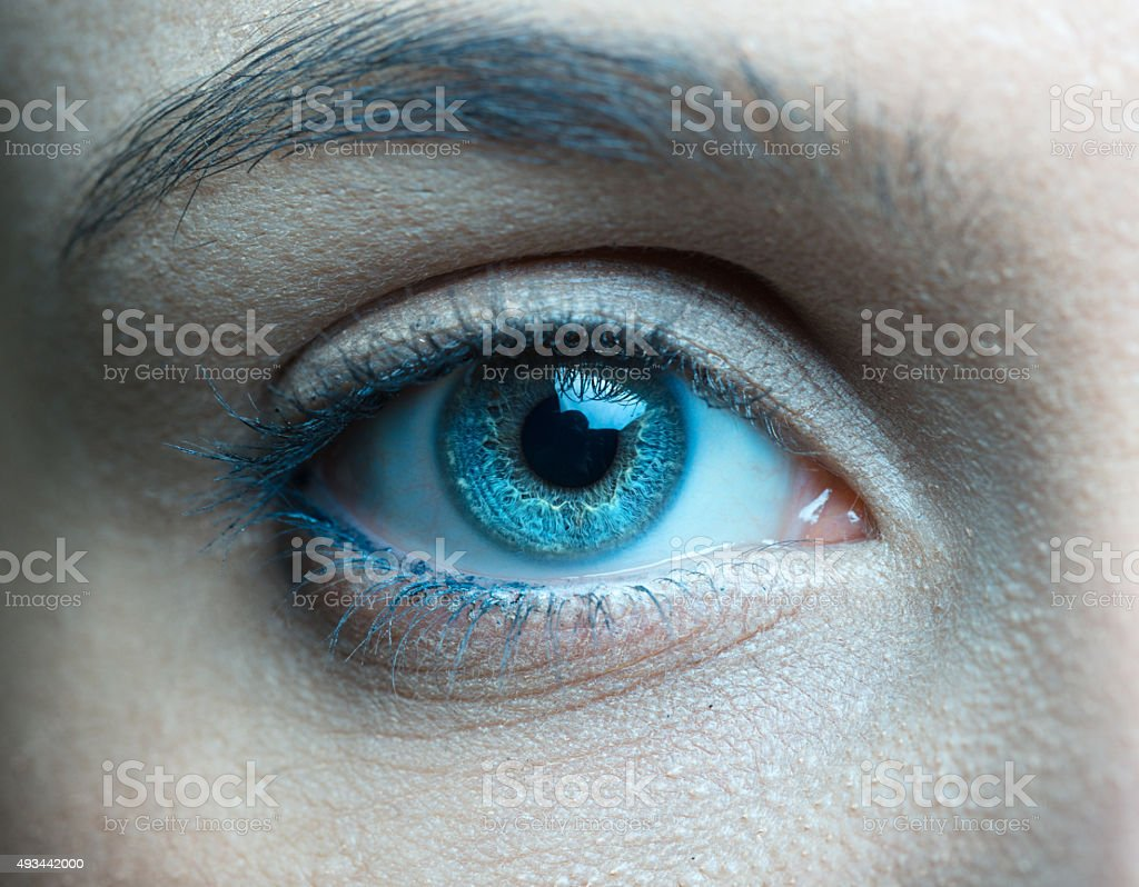 Human blue eye close up stock photo