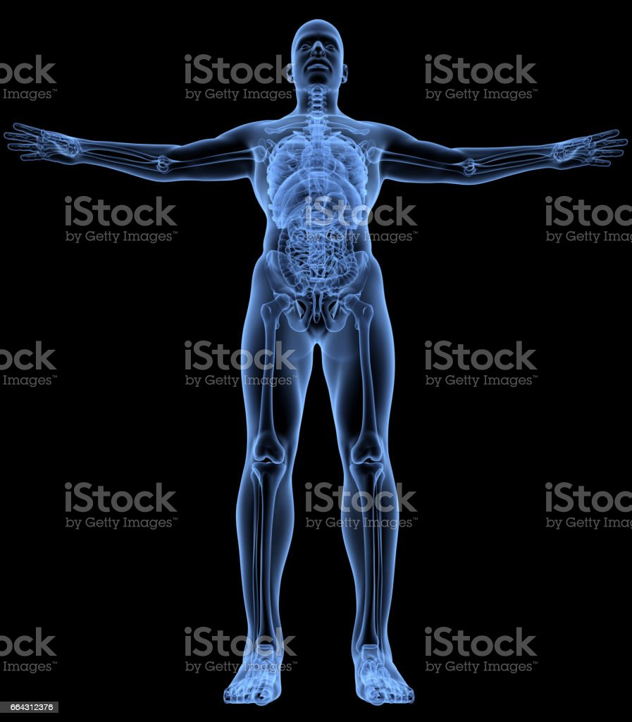 Human body medical x-ray pose stock photo