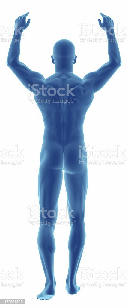 Human body of a man with arms over his head royalty-free stock photo