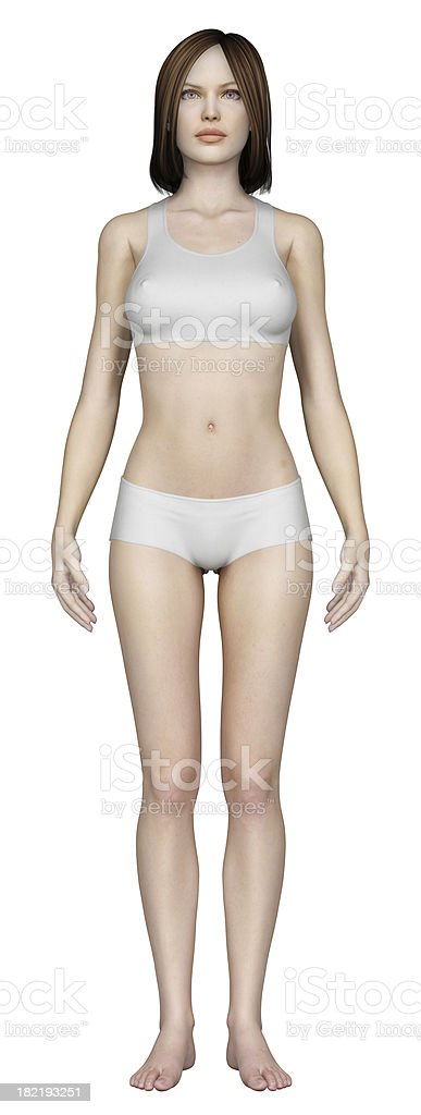 Human body of a woman royalty-free stock photo