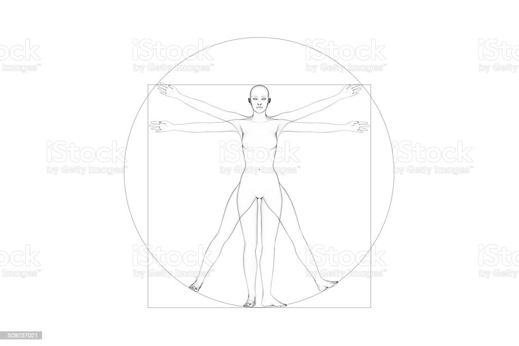 Human Body Proportions (Female) stock photo