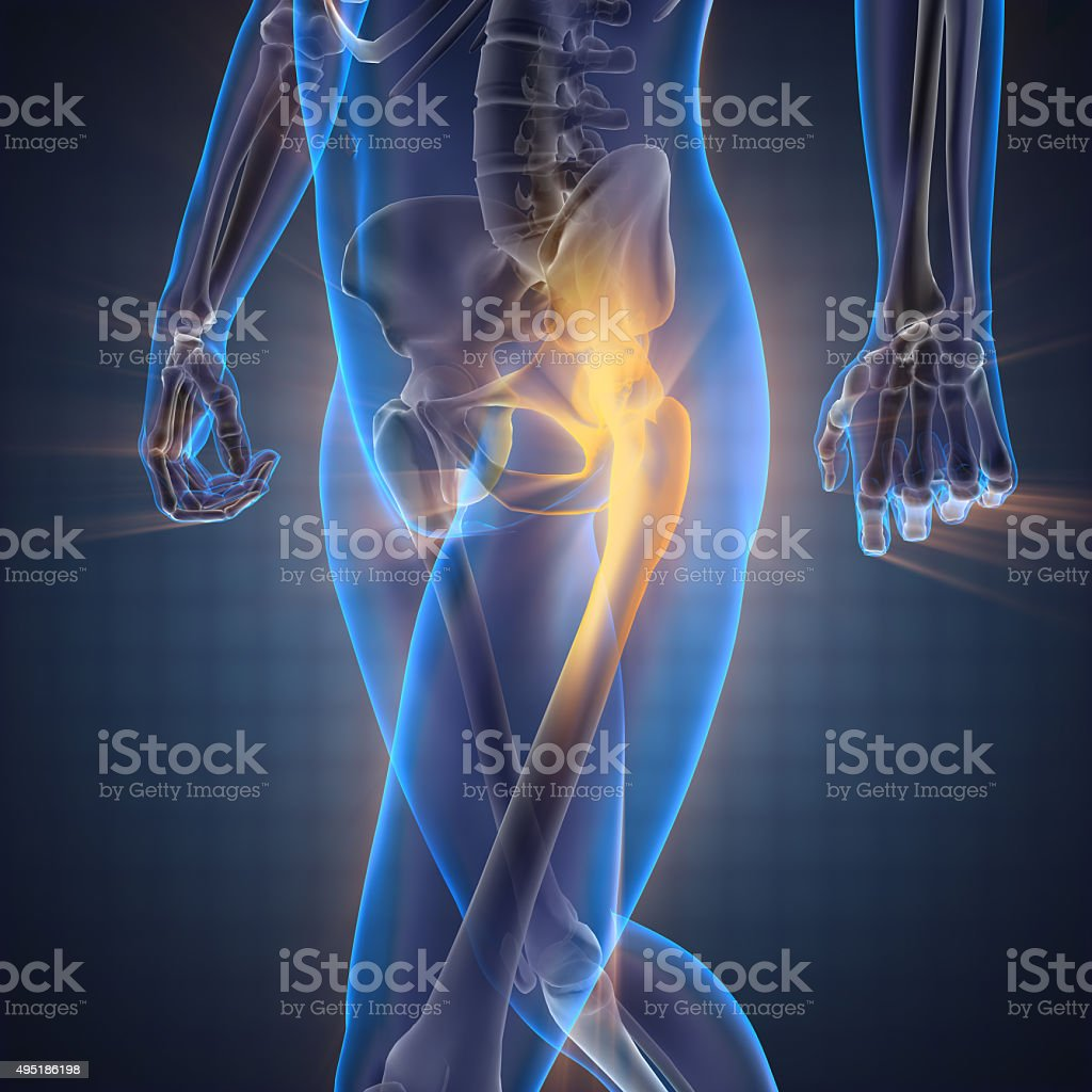 human bones radiography scan image royalty-free stock photo