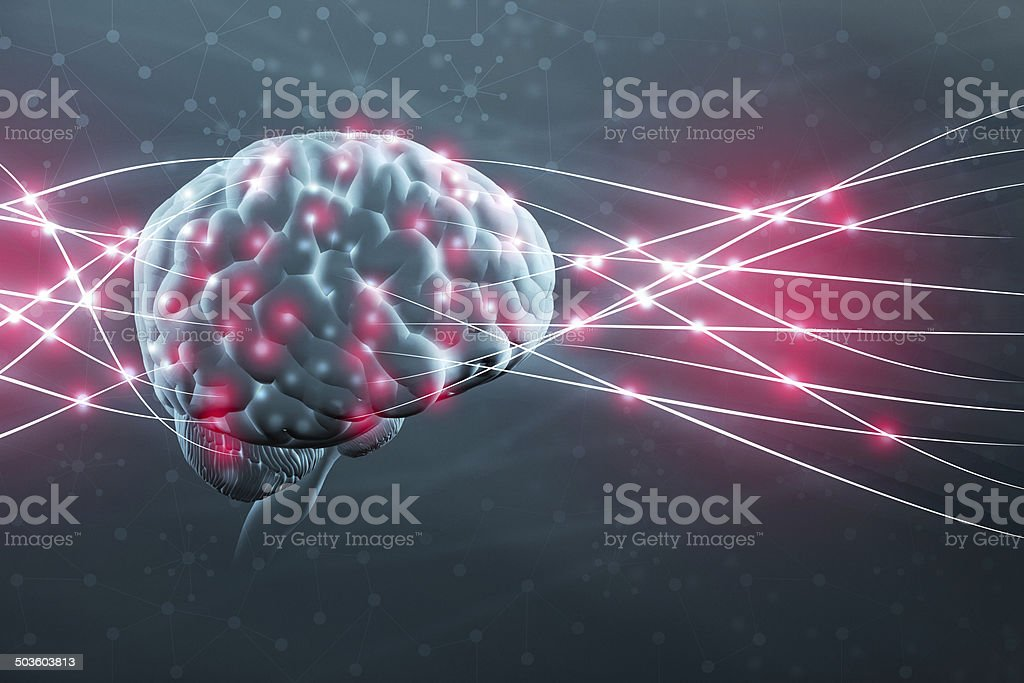 Human brain and neural nerve connections stock photo