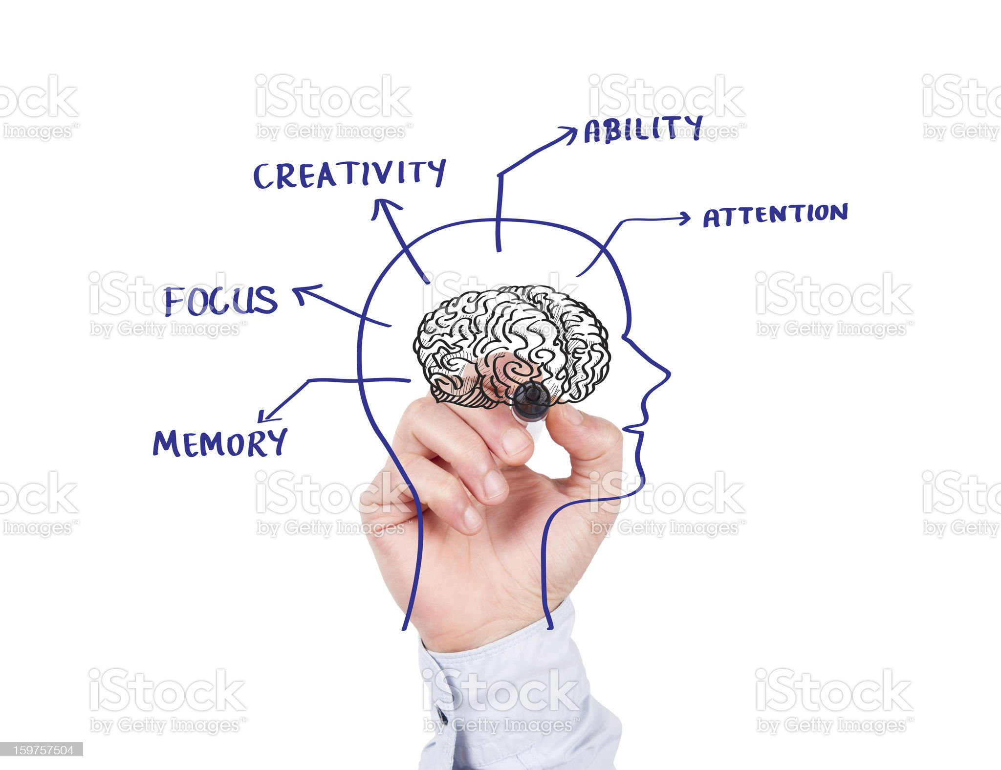 Human Brain Concept on Whiteboard royalty-free stock photo
