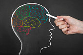 Human Brain Lobes on Blackboard.