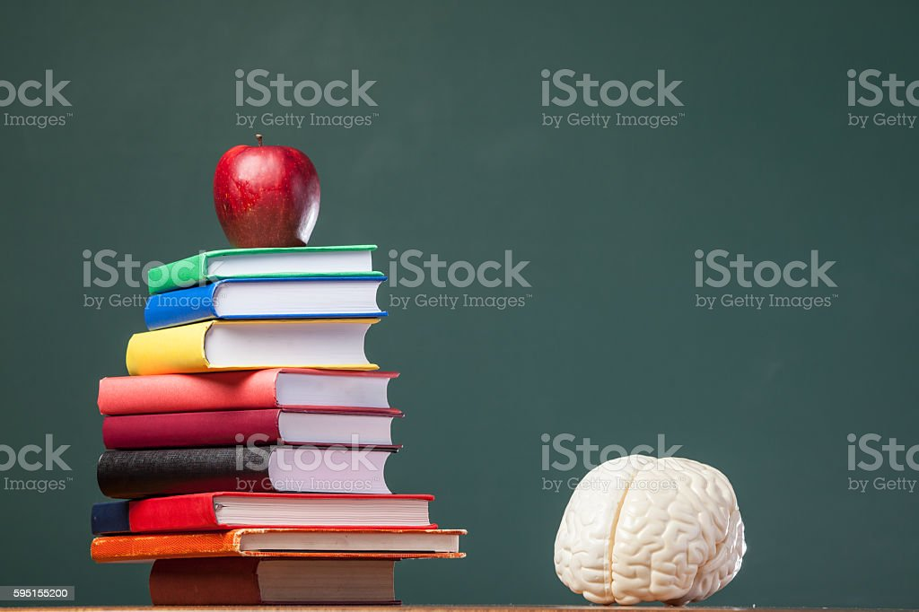 Human brain model on stack of books before blackboard stock photo