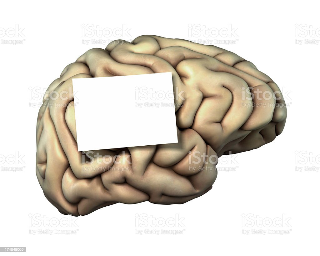 Human brain with a sticky note stock photo