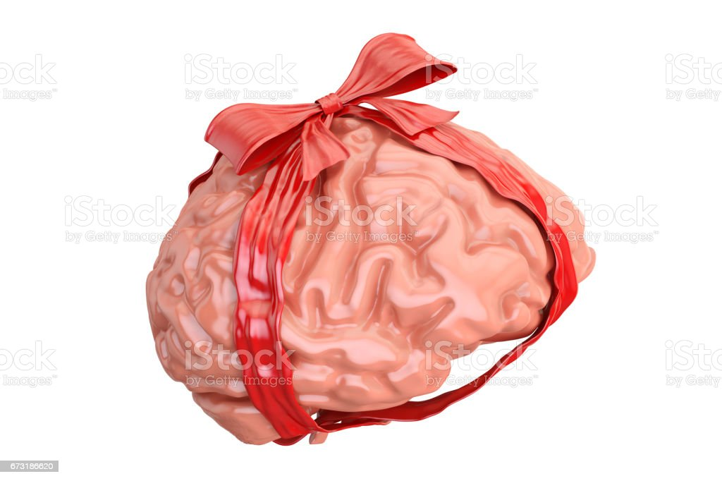 Human Brain with red bow and ribbon, gift concept. 3D rendering  isolated on white background stock photo
