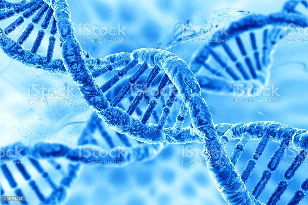 human DNA stock photo
