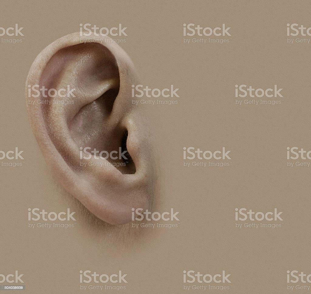 Human ear. Background.