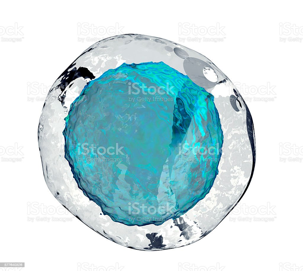human egg cell isolated on white stock photo