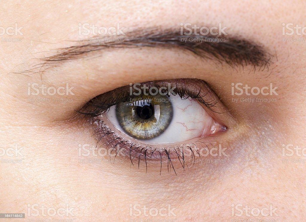 human eye closeup royalty-free stock photo