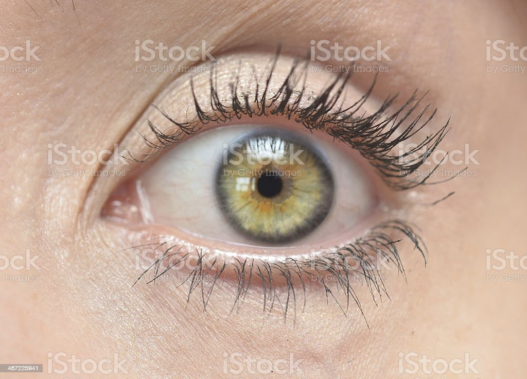 human eye royalty-free stock photo