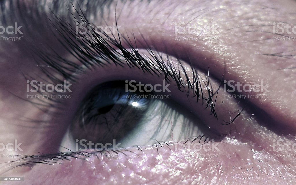 Human eye. stock photo