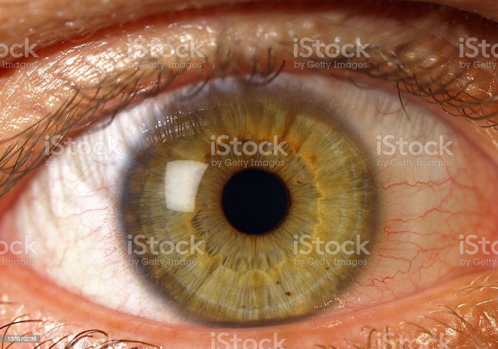 Human eye watching! stock photo