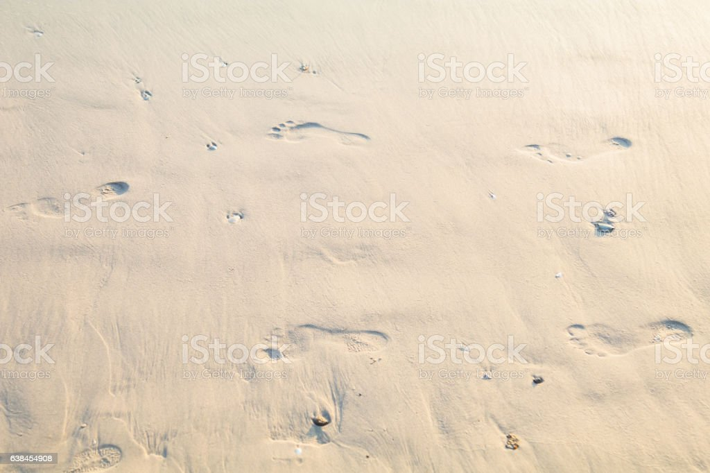 human footprints in sand on the beach stock photo