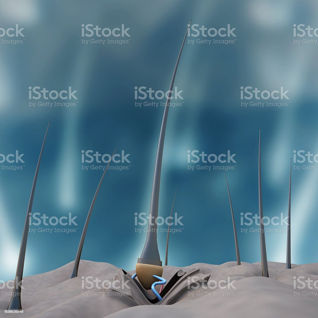 Human hair stands stock photo