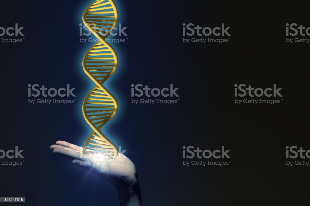 human hand and gene, 3D rendering stock photo