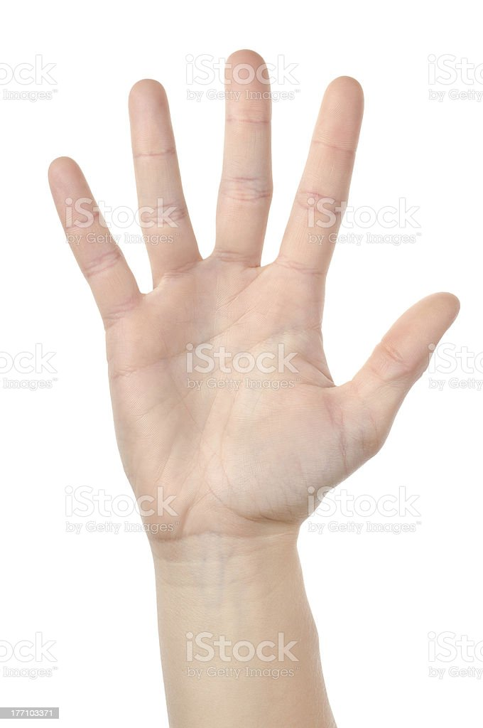 Human hand isolated stock photo