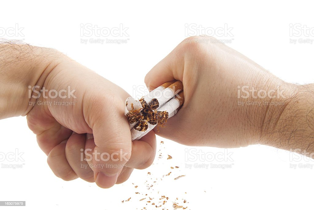 Human hands violently breaking cigarettes stock photo