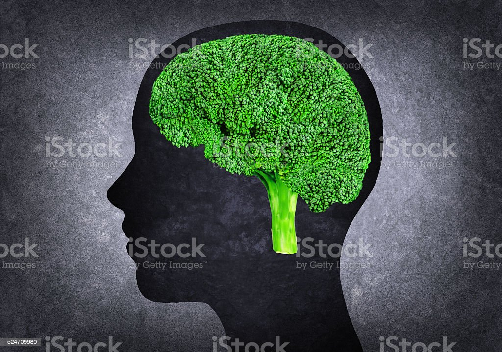 Human head with brains brocoli stock photo