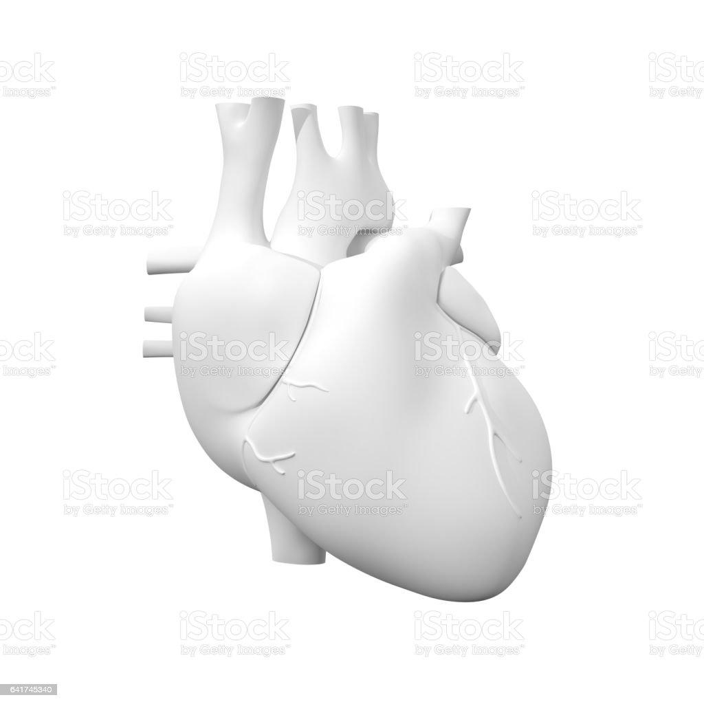 Human Heart, 3D Model stock photo