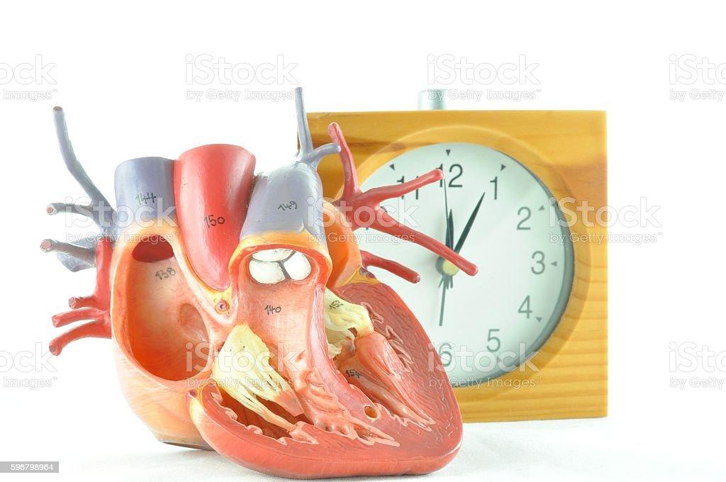 human heart and clock stock photo