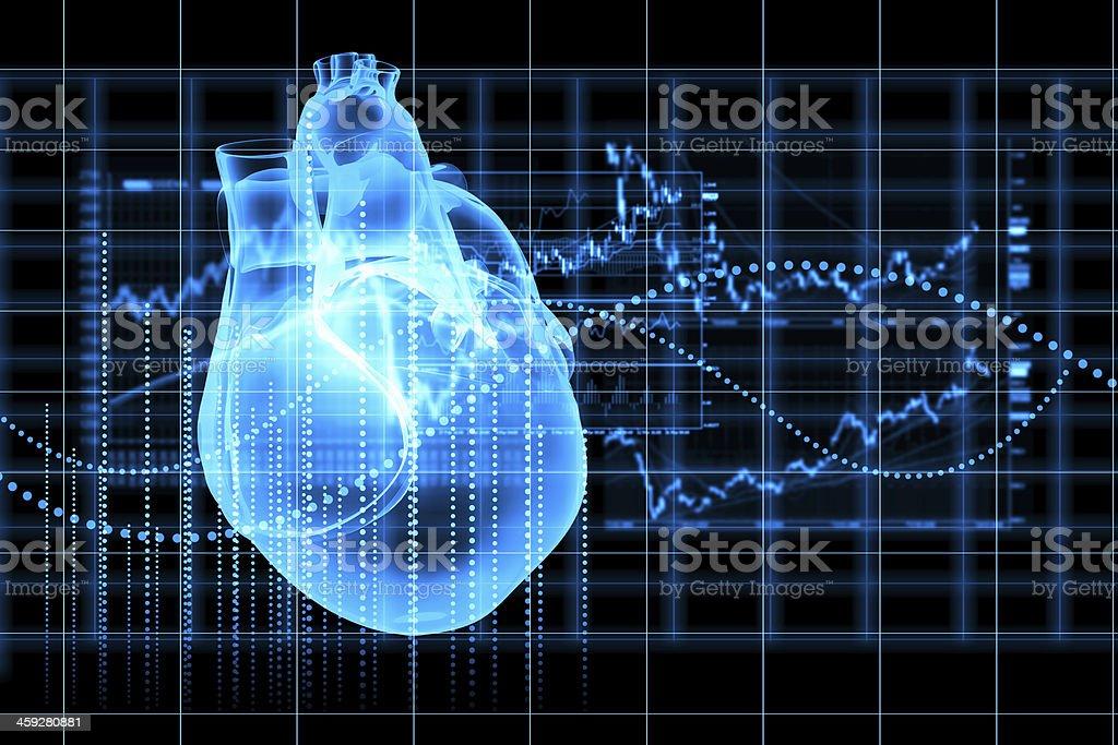 Human heart beats stock photo
