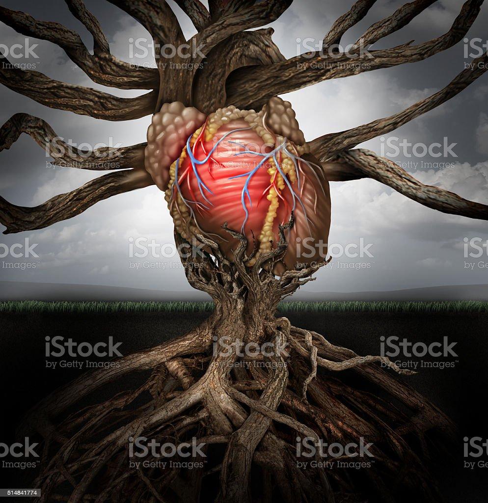 Human Heart Health Concept stock photo