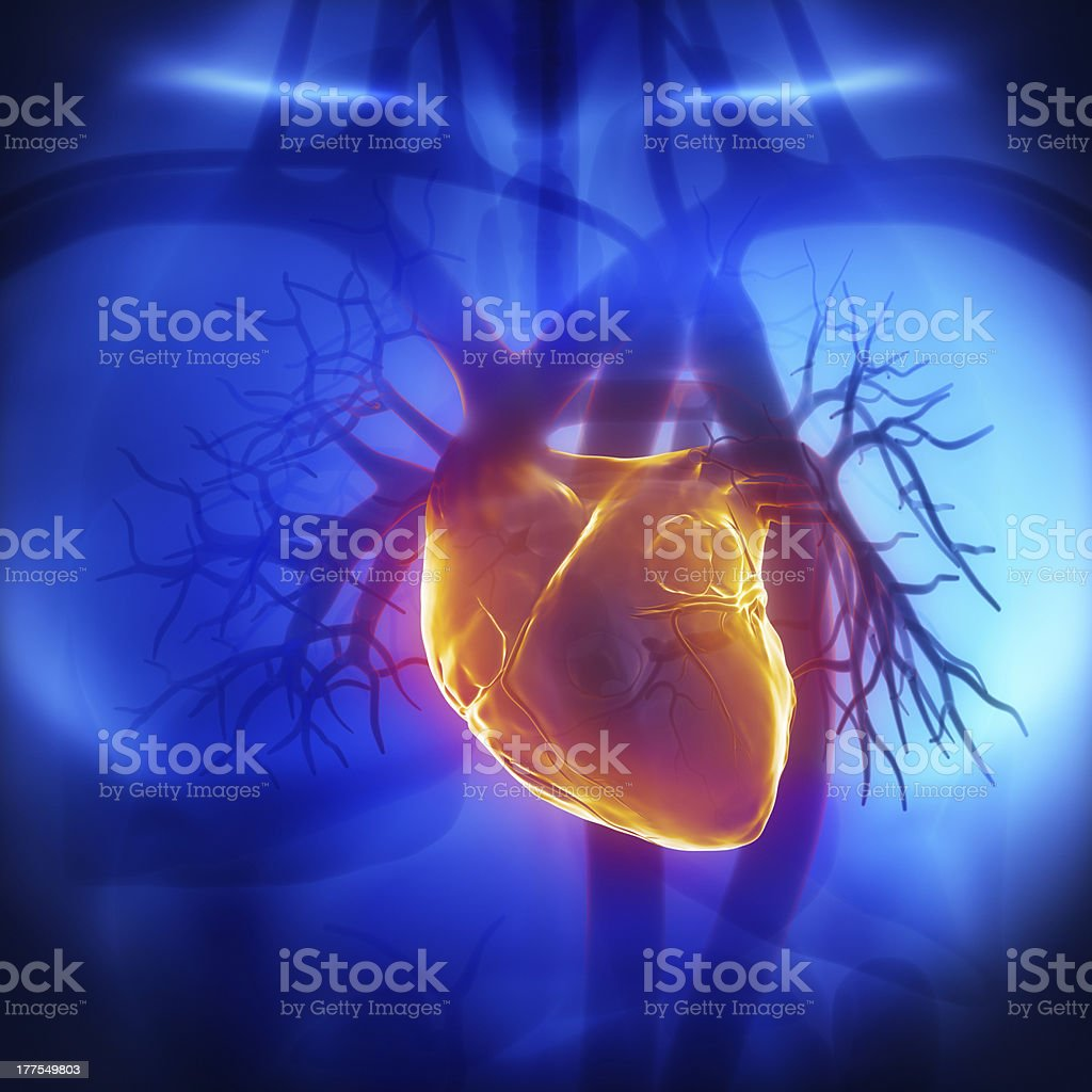 Human herat glowing in chest stock photo