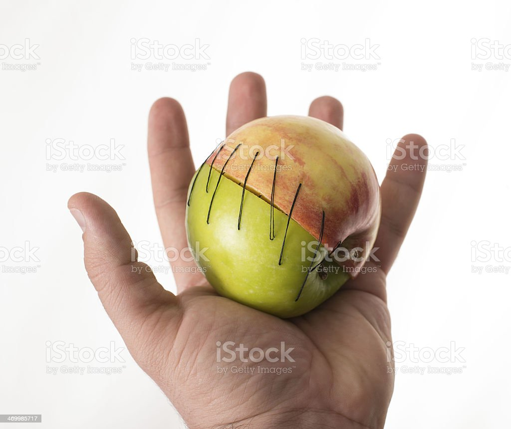 human holding green  red two apple part manipulated fruit stock photo