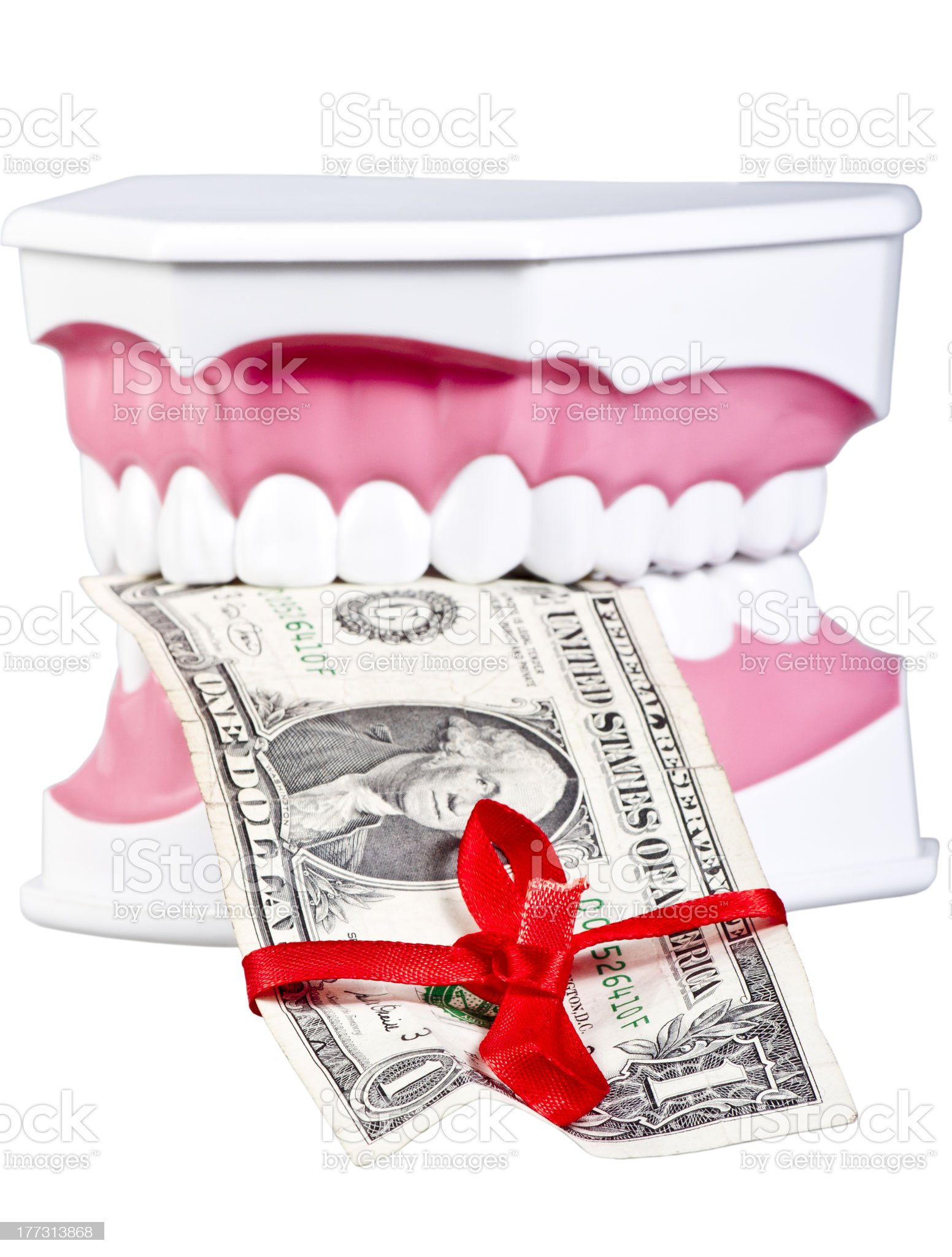 Human jaw with one dollar royalty-free stock photo