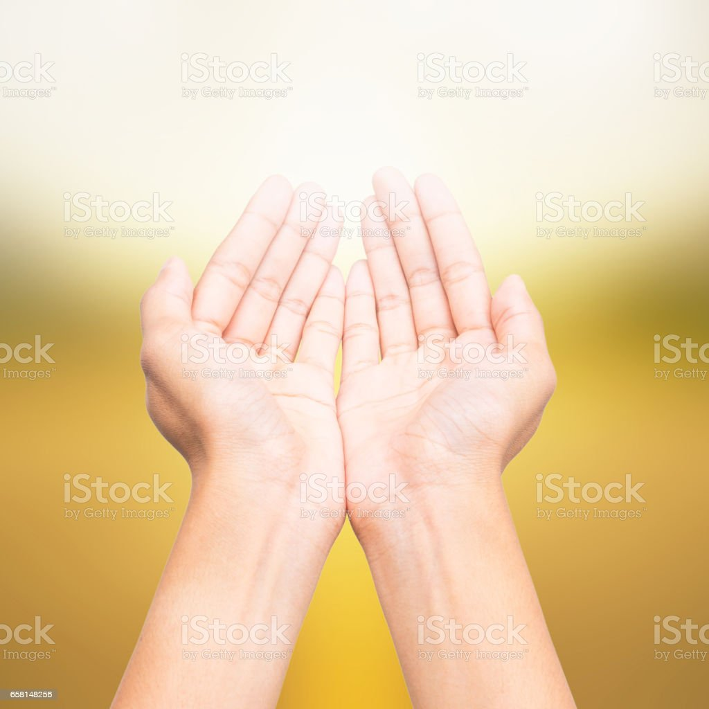 Human open empty hands, over blurred nature background stock photo
