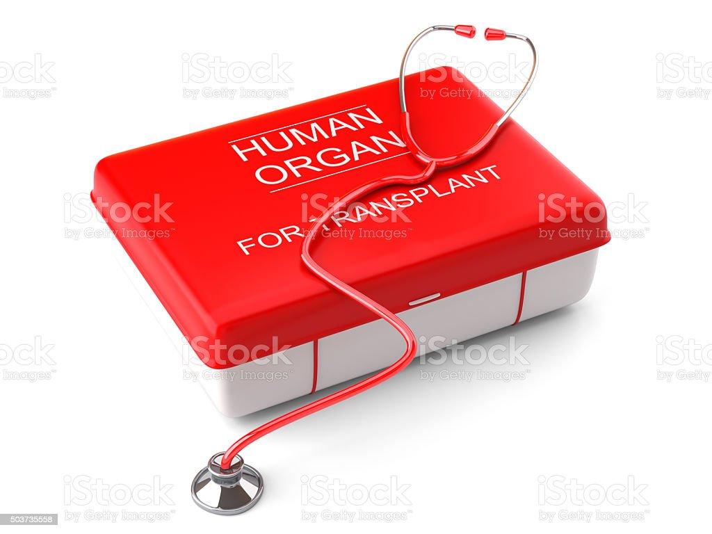 Human organ transplant transportation stock photo