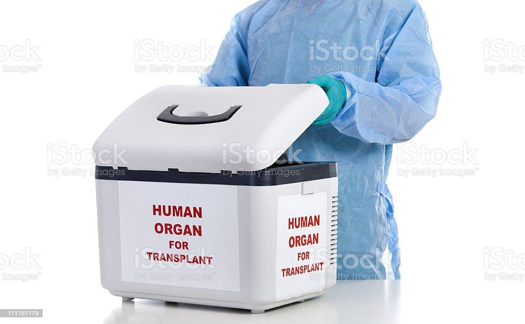 Human Organ Transplantation stock photo