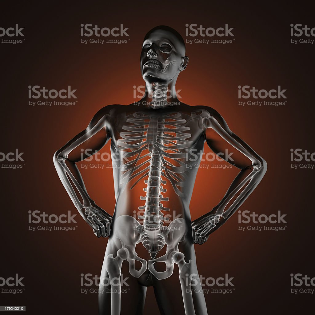 human radiography scan royalty-free stock photo