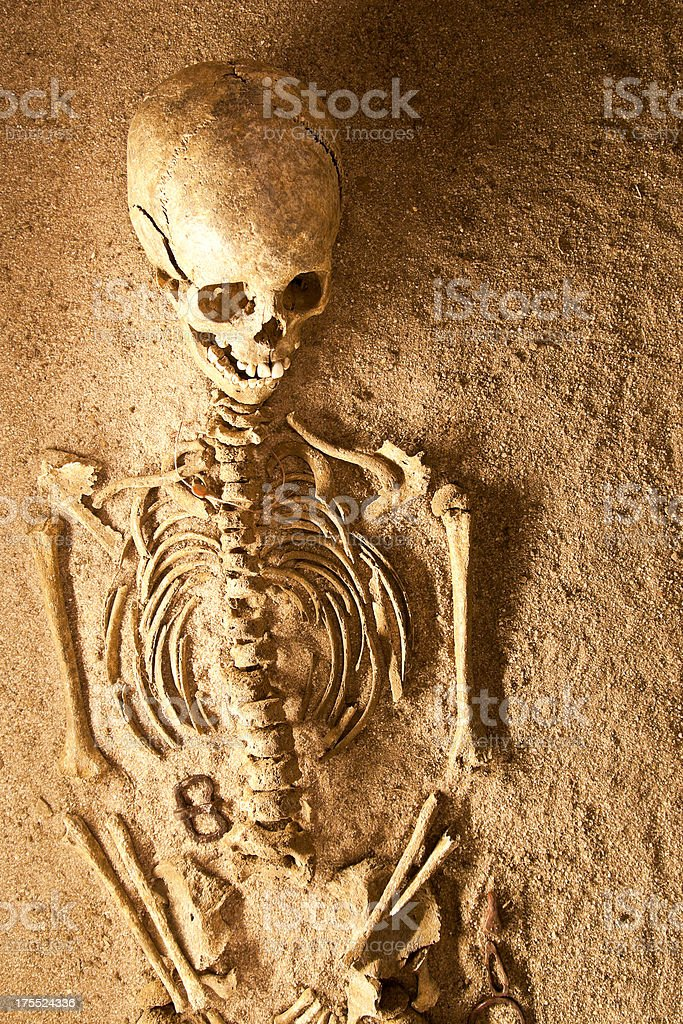 Human Remains royalty-free stock photo