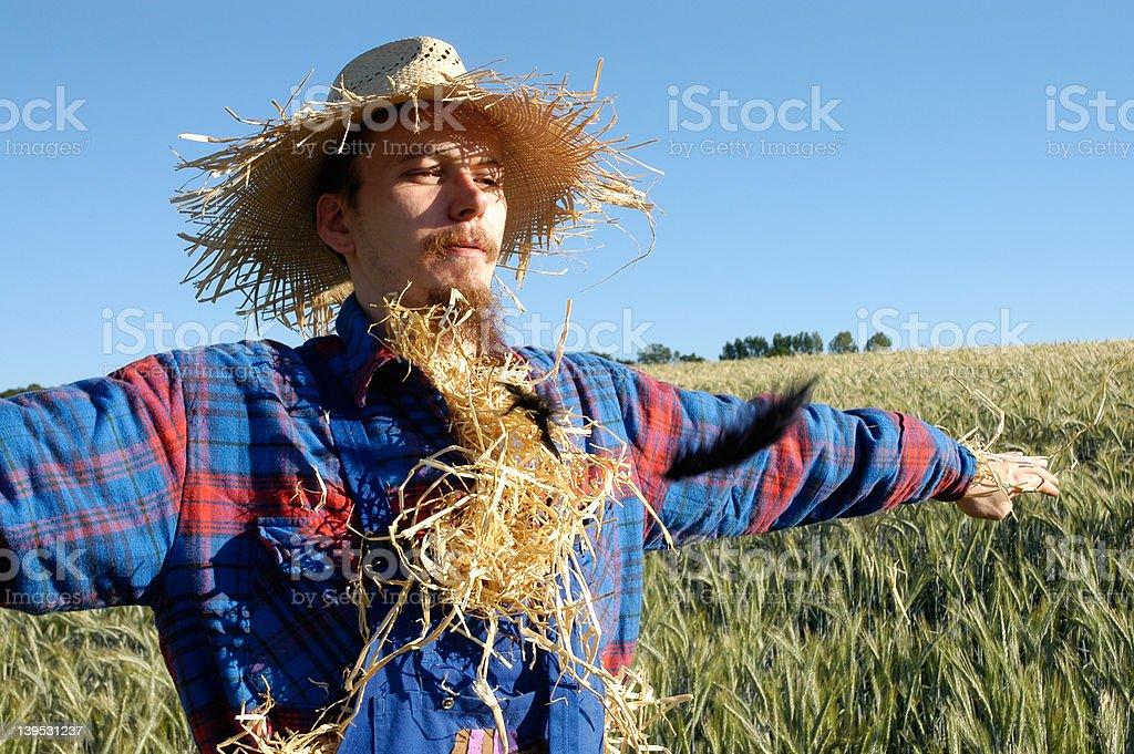 human scarecrow VII stock photo