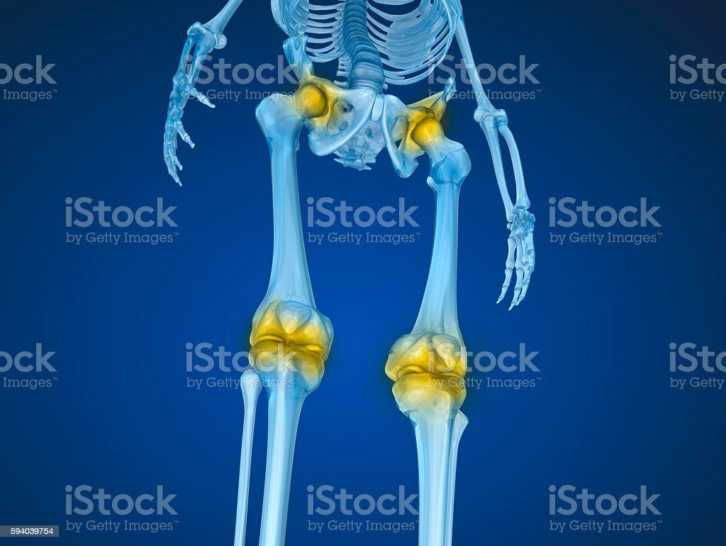 Human skeleton and damajed joints . stock photo